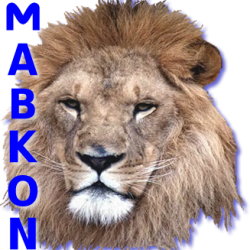 Mabkon Asset Group